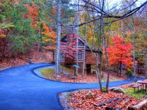 Mountain Love is a one bedroom honeymoon cabin in Pigeon Forge offering peaceful seclusion yet convenience to town