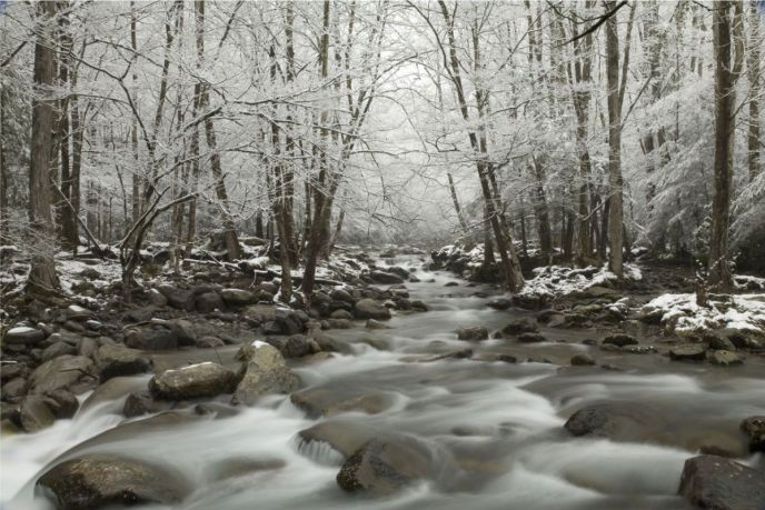 Great Smoky Mountains National Park - Winter Stream in Greebriar