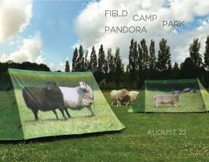 FieldCamp