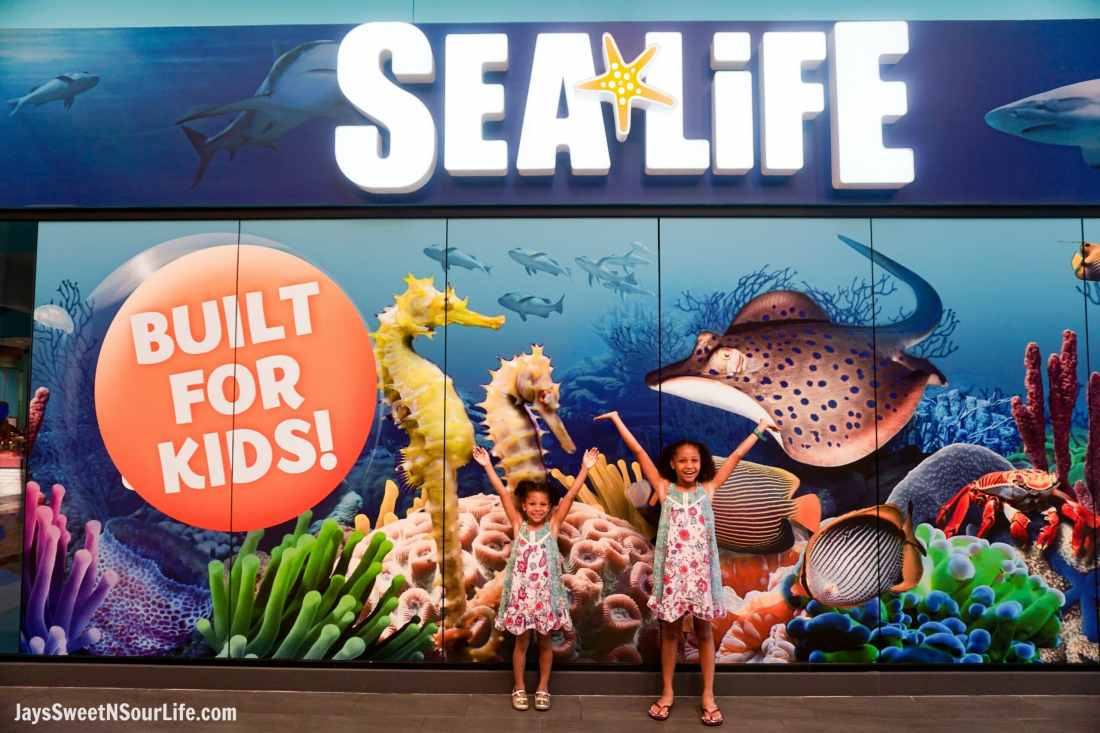 Sea Life - Visit Cabarrus County - Entrance Girls.A Large Families Adventure Guide To Cabarrus County - North Carolina - via JaysSweetNSourLife.com.