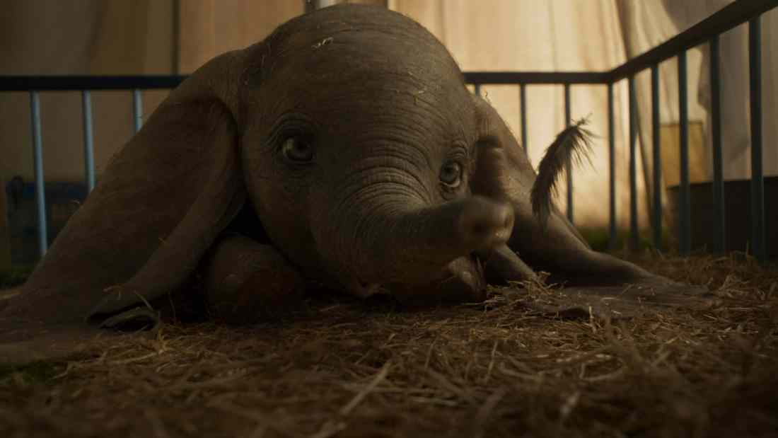 DUMBO Closeup. Disney's live-action adventure Dumbo film explores where differences are celebrated, family is cherished and dreams take flight. In theaters March 29, 2019.