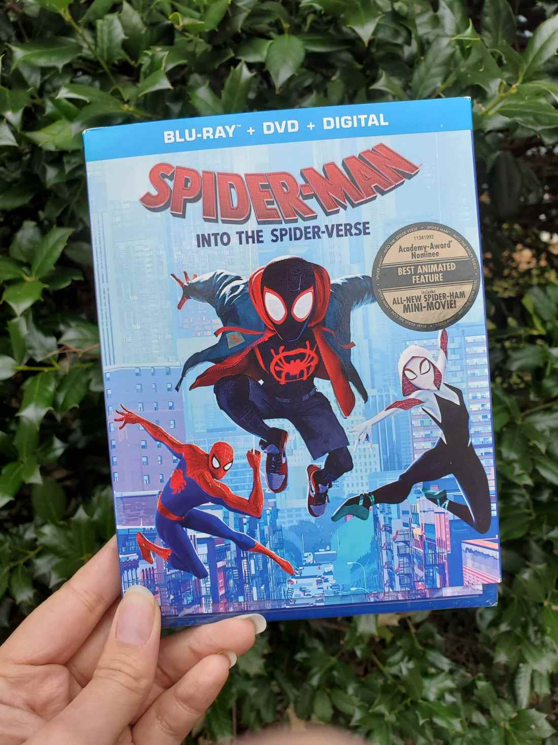 SPIDER-MAN: INTO THE SPIDER-VERSE DVD Front Cover. Learn all about the SPIDER-MAN: INTO THE SPIDER-VERSE film as well as snag a DIY Paper Foldables PDF for more fun with the family! SPIDER-MAN: INTO THE SPIDER-VERSE is availble on 4K, Bluray, and DVD today!