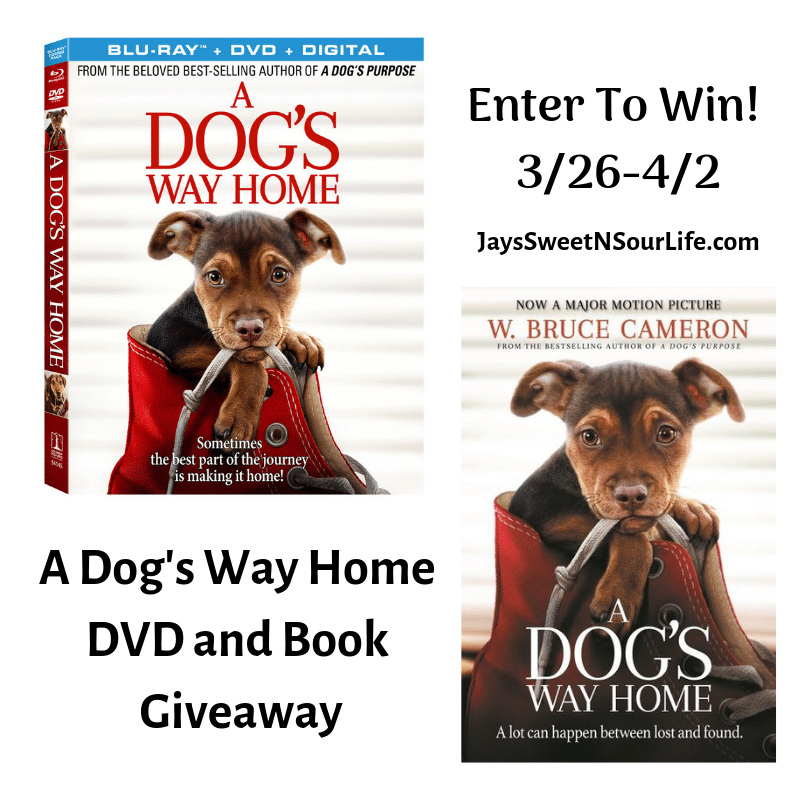 "Enter to win in my A Dog's Way Home DVD and Book Giveaway. am very excited to partner with Sony Pictures to bring you my ""A Dog's Way Home"" DVD and Book Giveaway! This touching film shares Bella's heartwarming adventure as she embarks on an epic 400-mile journey back home."