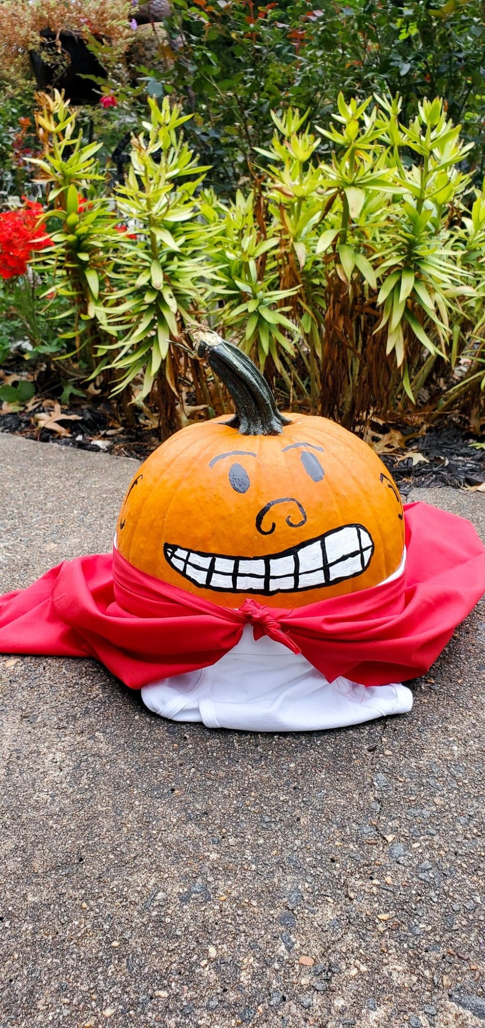 Painted Captain Underpants Pumpkin Finished. Skip the mess and create your very own Painted Captain Underpants Pumpkin this Halloween. In celebration of Dreamworks's The Spooky Tales of Captain Underpants: Hack-A-Ween Halloween special streaming now on Netflix we created this fun painted halloween pumpkin.