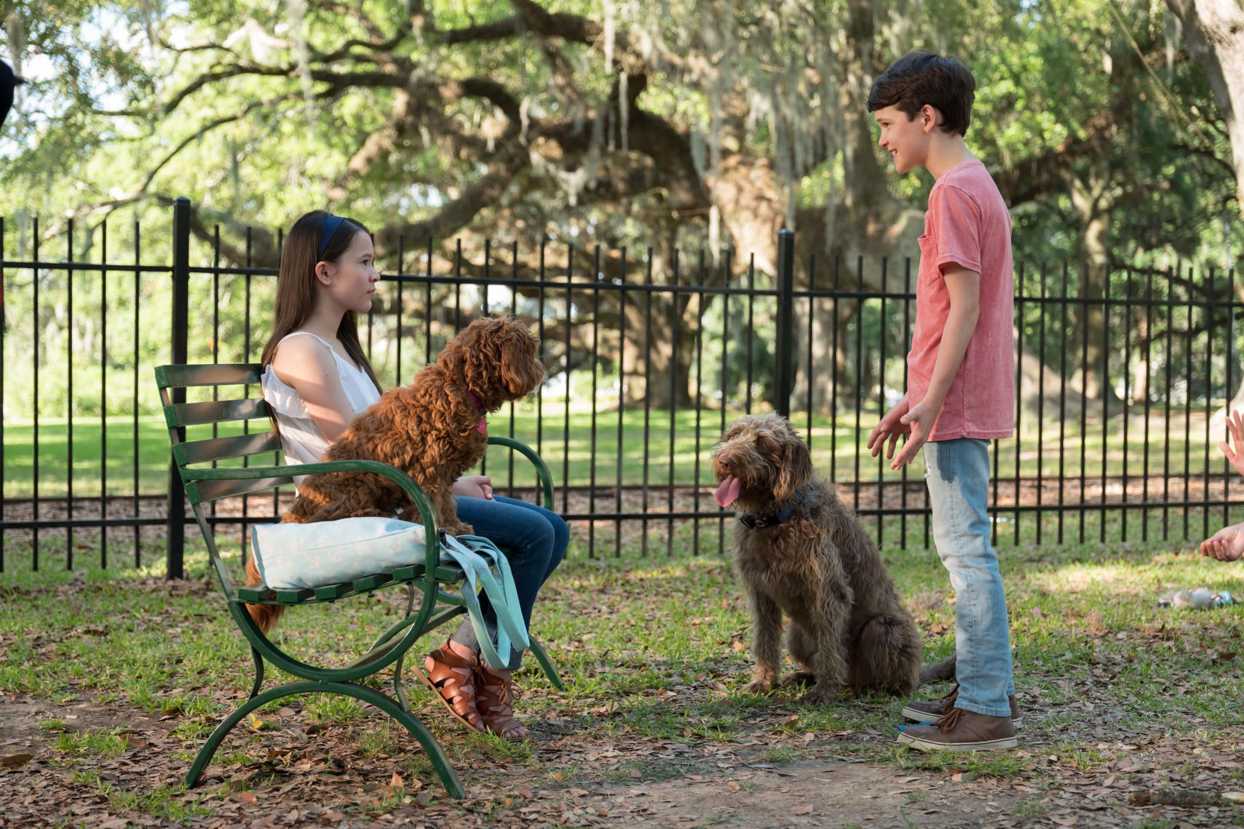 Think Like a Dog Kids. It's time to give canines some love! Don't miss the paws-itively heartwarming family comedyThink Like a Dog, premiering on Digital, and On Demand June 9 from Lionsgate.