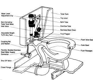 Replacing A Toilet Jaytech Plumbing Guelph Plumber