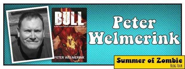 peter-welmerink-book-SOZ2017