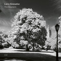 The Gleaners - Larry Grenadier