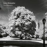 The Gleaners - Larry Grenadier
