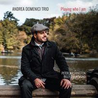 Playing who i am - Andrea Domenici Trio