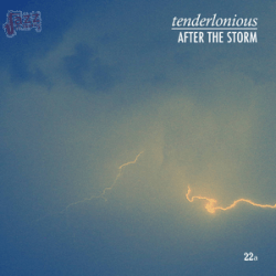 After the storm - Tenderlonious
