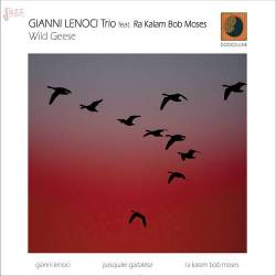 Wild Geese - Gianni Lenoci Trio