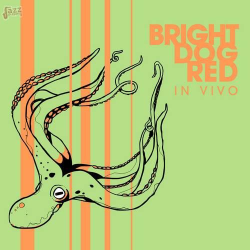 In vivo - Bright Dog Red