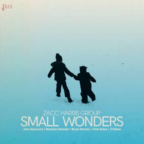 Small Wonders - Zacc Harris Group