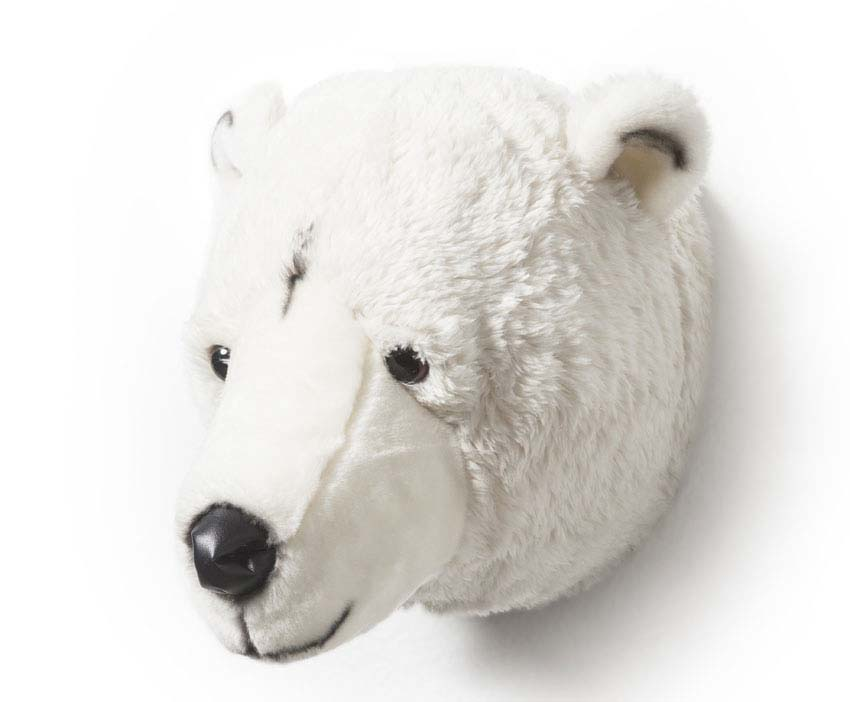 Bear Lights Out Sale