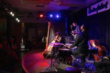 Brandee Younger (harp), Mats Sandahl (b), Marc Ayza (dr), Unterfahrt München, Foto Ralf Dombrowski