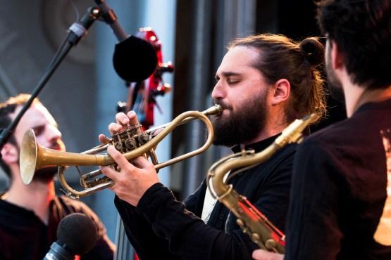Trompeter Shake Stew. Foto: Petra Basche