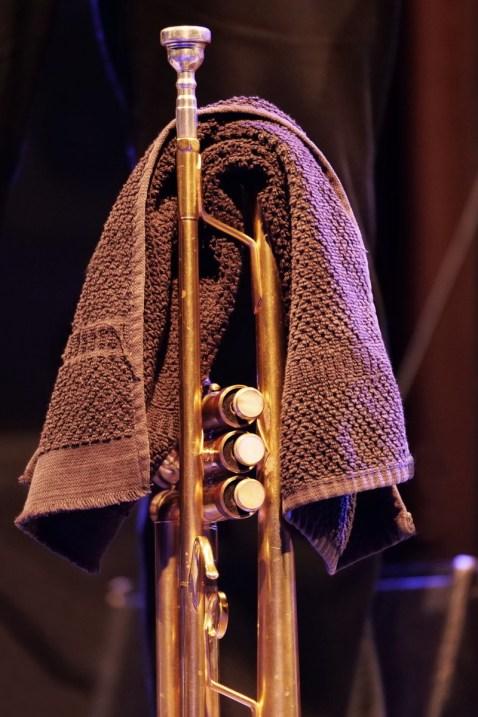 P1548971 trumpet - Foto TJ Krebs