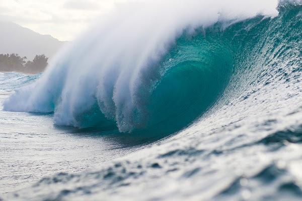 surf pipeline masters