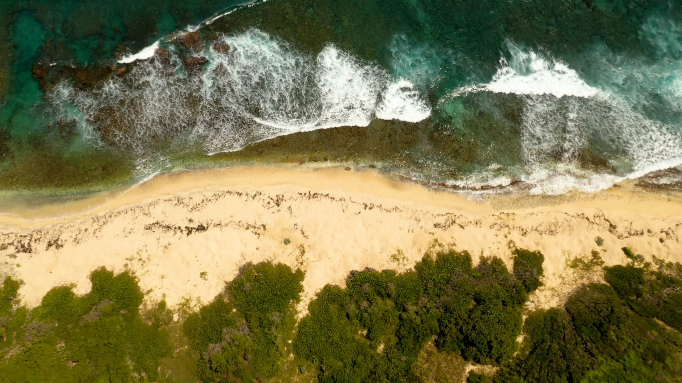 Aerial video of wave crashing on USVI beach on east side of St Croix. Sunny day