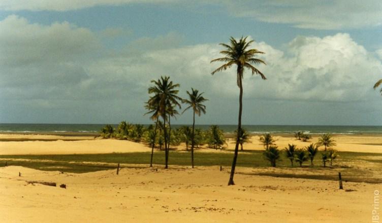 Brasil - Alagoas - Foz do Rio Sao Francisco - APA de Piacabucu