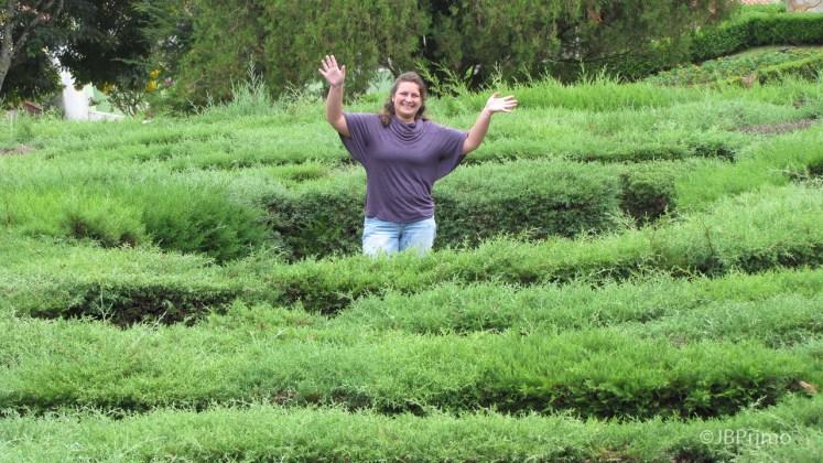 Brasil - Rio Grande do Sul - Nova Petropolis - Labirinto Verde