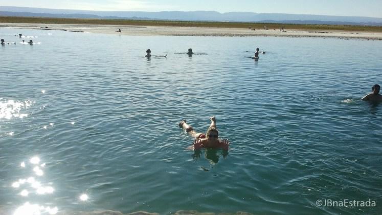 Chile - Atacama - Laguna Cejar