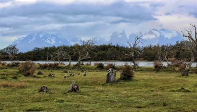 Chile - Torres del Paine - Villa Serrano