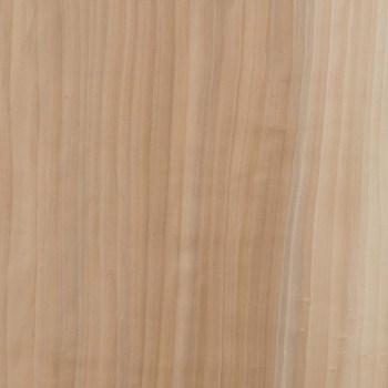 JBR WOOD body pioppo liscio 35x55