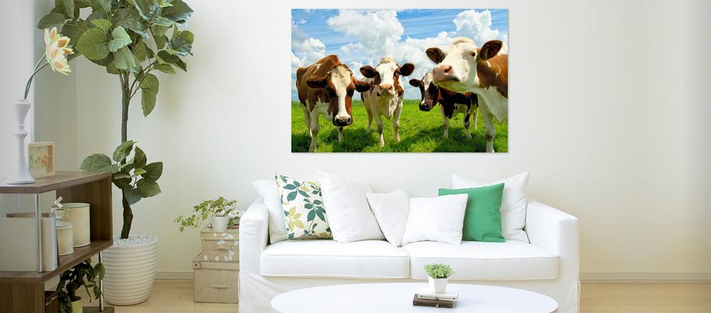 Four chatting cows -  WerkAanDeMuur