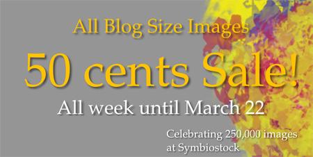 Blog size image sale