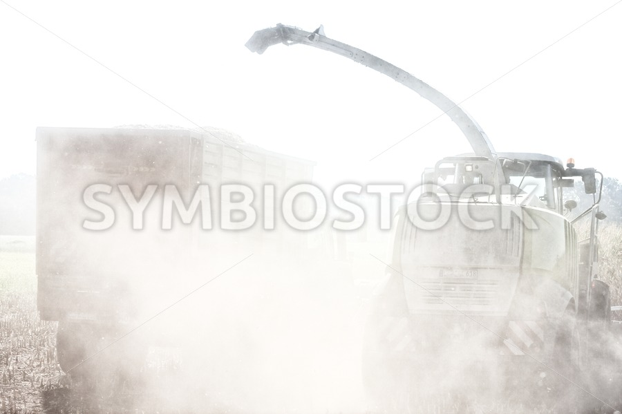 Maize harvesting in the dust - Jan Brons Stock Images