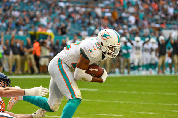 Miami Dolphins strong safety T.J. McDonald (22) intercepts a pass in the endzone