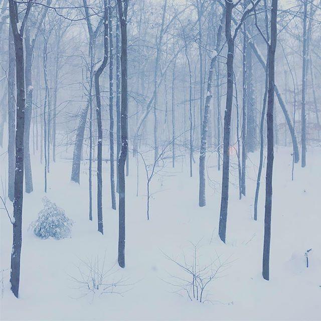 Polar vortex madness! Evening snowball fight at -24 (windchill). ️🥶️☃️