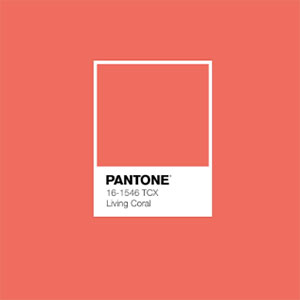 Pantones 2019 Color Of The Year Is The Warm Mellow Living