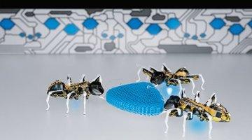 bionic ants