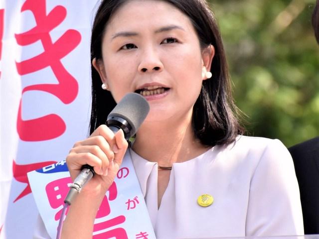 【杉並区議補選】野垣あきこ候補 6議席へ全力