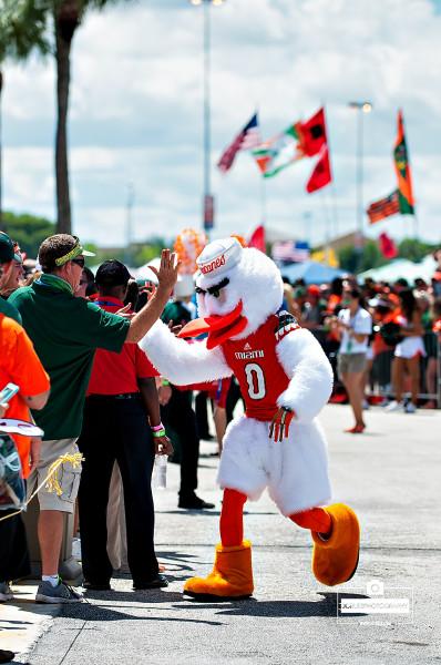 Sebastian the Ibis greets fans