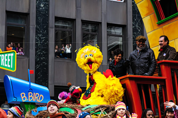 big bird macys thanksgiving day parade