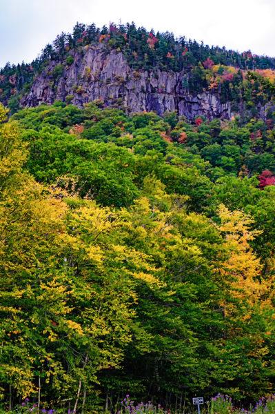 white mountains leaf peeping