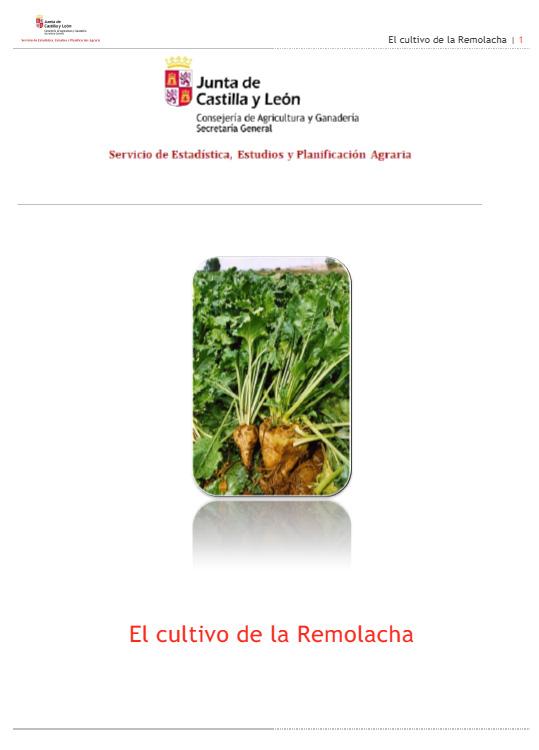 https://i2.wp.com/www.jcyl.es/web/jcyl/binarios/331/862/Informe-Remolacha-amp.jpg?w=825