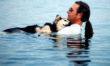 L'amour entre un homme et son chien qui a ému la planète.