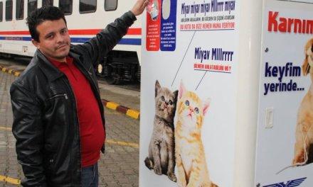 Une machine nourrit des chiens et chats errants… en recyclant des bouteilles ! (Vidéo)