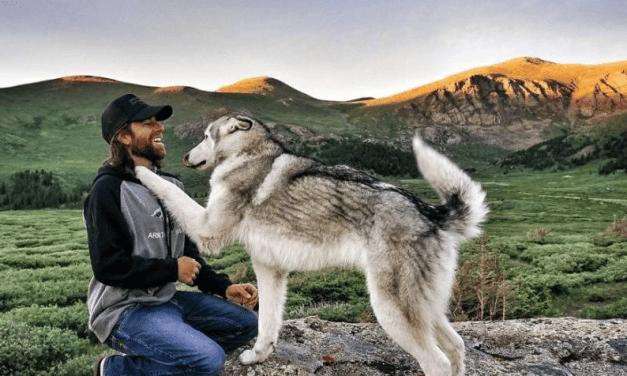 Kelly Lund parcourt le monde avec son chien Loki et prend de magnifiques photos qu'il partage avec vous.