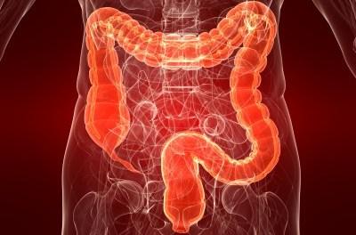 Vous avez environ 13,5 kg de poison dans votre colon, voici comment vous en débarrasser en buvant…