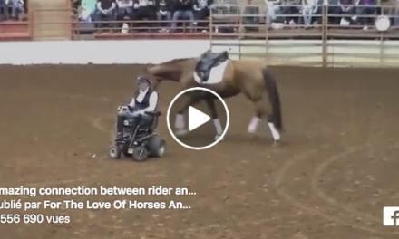 Complicité étonnante entre cette cavalière handicapée et son cheval