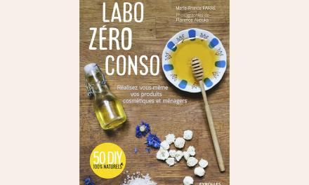 LABO ZÉRO CONSO: 50 DIY 100% naturels de PRODUITS COSMÉTIQUES ET MÉNAGERS – MARIE-FRANCE FARRÉ
