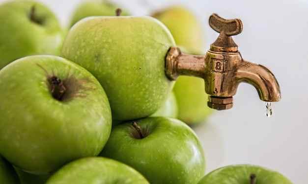 « Une pomme ou – un jus de pomme fait maison – chaque matin chasse le médecin… »
