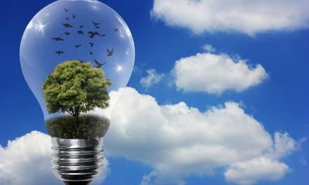 Les énergies renouvelables bientôt toutes compétitives