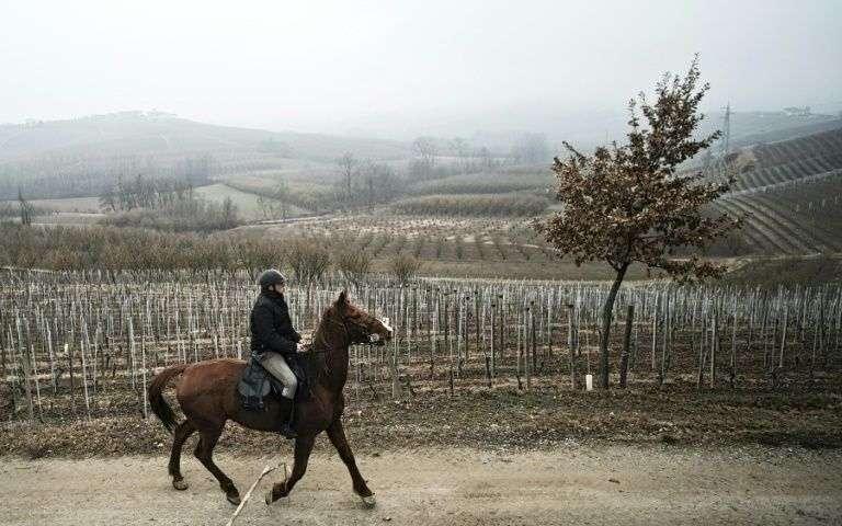 Dans un Piémont vieillissant, un médecin italien visite ses patients à cheval
